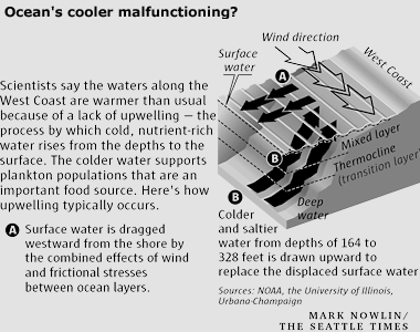 Ocean motion impact warmer oceans and marine life upwelling diagram read longdesc ccuart Choice Image