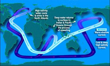 Ocean Motion : Impact : Ocean Conveyor Belt