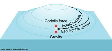 coriolis force at a right angle to geostrophic current direction, and opposite the direction of gravity, description follows